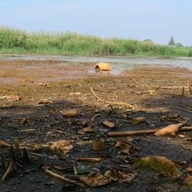 Ground Gas/Contaminated Land
